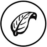 RATSLAB Icono dibujado a mano para el valor añadido de ecológico y orgánico